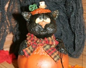Black cat pumpkin gourd