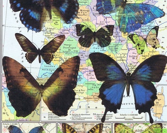Butterflies.Colourful.Collage.Map Page Print,home/deco.affordable,art,freebie.mom.dad.animal lover.birthday.traveller.globe.child.eco.insect
