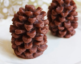 Cinnamon Pine Cone Soap - Woodland Soap, Bath and Beauty, Pinecone Soap, LoveLeeSoaps, Novelty Soap, Soap Favors, Wedding Favors, Teen Gift