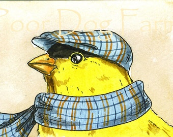 Winter Special 5 x 7 - Cold Yellow Finch-(limited edition)