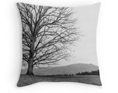 "Asheville NC Pillow Cover, Photo Pillow Cover, Home Decor, 16"" 18"" 20"" Square Throw Pillow, Landscape, Black and White Throw Pillow Cover"
