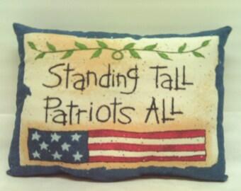Patriotic Pillows / Americana Pillows / Decorative Pillows / Pillows / Ornies