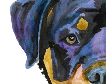 Rottweiler Art Print of Original Watercolor Painting - 8x10 Dog Art