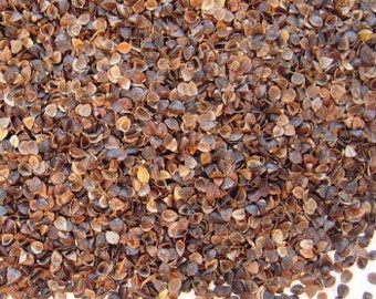 Buckwheat Hulls - 1 Lb