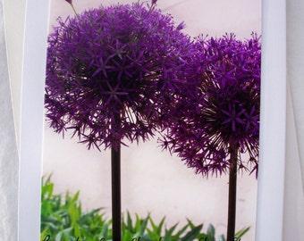 Floral Photo Card Purple Flower