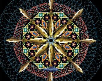 Kaleidoscope Cod 8 inch square giclee print