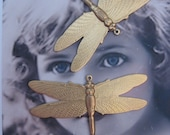 Large Flat Dragonfly Pendant Natural Brass 323RAW x2