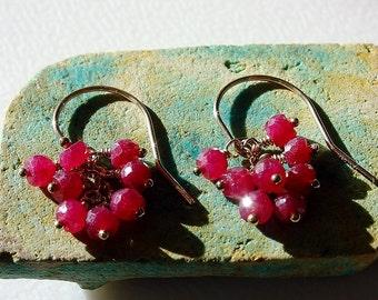 Ruby Earrings / Ruby & Gold Earrings / Genuine Ruby Earrings / Ruby Cluster Earrings / Fuschia / Gold / Cluster / Gem Cluster / Handmade