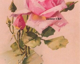 Love's Tokens, Art Print, Trio, Catherine Klein, Roses, Shabby Chic Decor