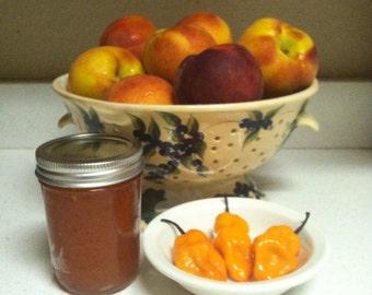 Peach  Habanero Jam Appetizer Gourmet Palisade Colorado peaches Hot Pepper Homemade