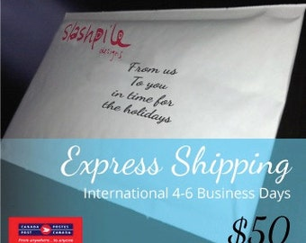 Express Shipping International 4-6 business days