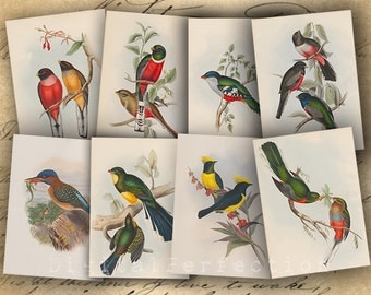 Instant Download - Printable Vintage Birds Illustrations - ATC ACEO 2.5 X 3.5 inch - DigitalPerfection digital collage sheet 1032