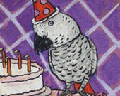 Bird Cross Stitch Kit - African Grey Parrot - Birthday - By Jay Schmetz - Fun Needlecraft
