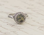 Real Butterfly Wing Silver Adjustable Ring The Charles Darwin