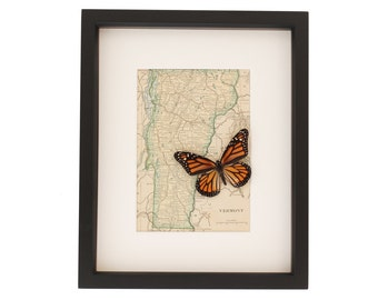 Old Map of Vermont with Framed Monarch Butterfly