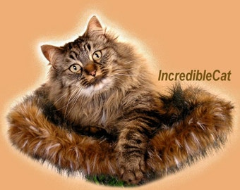 "BEST CAT BED 9"" High Loveland, Cat Lover Gift, Unique Cat Beds, Luxury Cat Beds, Fancy Cat Trees, Majestic Cat Furniture, Bed 18""x13""x9""high"