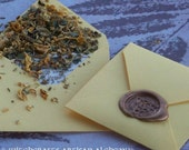 WALK CONFIDENT Spirit of Magic™ Herb Loaded Envelope Spell by Witchcrafts Artisan Alchemy®