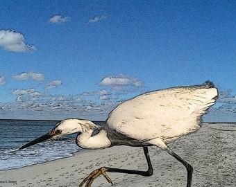 Bird Art, Egret on Beach, Blue Gray, White Heron, Beach Art, Woodland Animal, Waterfowl Lake, Wall Hanging, Home Decor, Giclee Print, 8 x 10