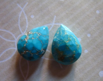 Shop Sale.. Matched Pair, SLEEPING BEAUTY Turquoise Briolette Beads, Pear, Luxe AAA, 12.4x9.25 mm, Robins Egg Blue, december birthstone