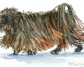PULI TROT Original Watercolor on Ink Print 11X14 Matted Ready to Frame