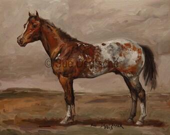 Appaloosa Horse 11x14 print
