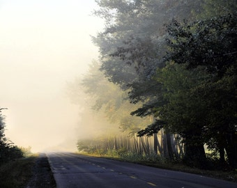 """Landscape photography foggy country road rustic dark trees woodland nature - """"The road"""" 8 x 10"""