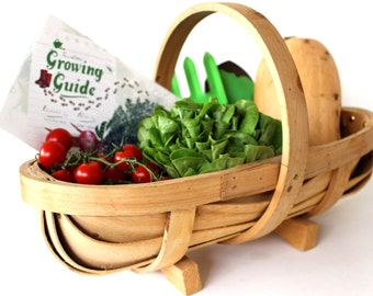 The Little Growing Guide - Kid's Booklet for Growing Food