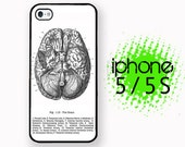 iPhone 5S Anatomical Brain Vintage Medical Chart iPhone 5S Case | Plastic or Rubber Case for iPhone 5 5S