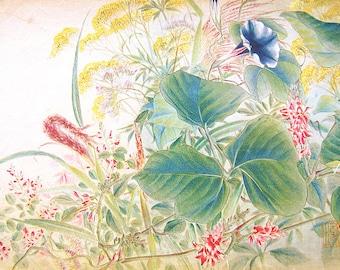 Vintage Japanese Print - Vintage Print - Flower Print - Floral Print -  Vintage Magazine Print - Japanese Magazine Insert - Magazine Cut Out