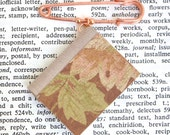 Miniature Book Pin - Brown and Pink Floral Design - Great Gift for Teachers Librarians Authors Book Clubs and More