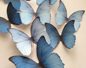 NEW  3D decorative butterflies - wall decoration - butterfly embellishment - 3D butterflies wall art by Uniqdots on Etsy