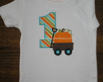 Pumpkin Birthday Shirt for Fall Birthday  Orange Aqua Green and Brown