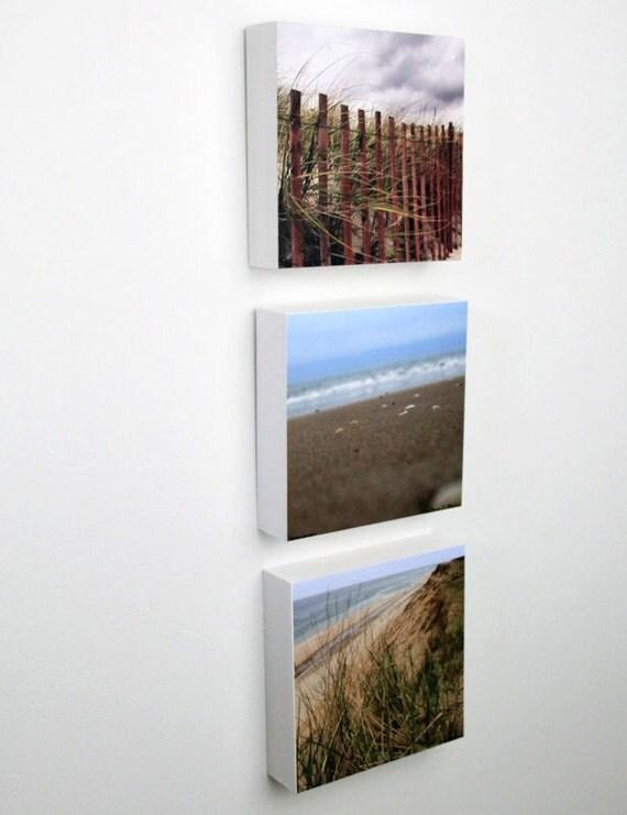 D cor bord de mer plage cl ture herbe sable par for Cloture bord de mer