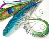 8pcs - Peacock Combination Set, millinery, crafter, starter, feather samples, peacock eyes and swords, silver pheasant, biots, guinea