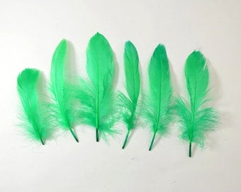 60-80pcs Goose Satinettes loose feathers, 6 grams, Green