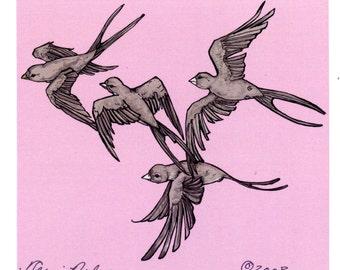 Birds by Terri Nelson