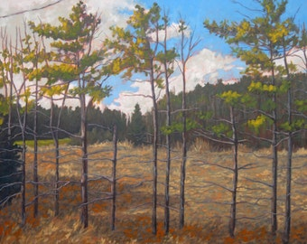 Spindly Trees on Roadside - original oil painting