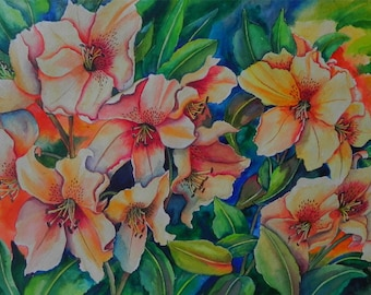 Rhododendrons in Orange