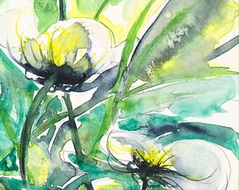 watercolor Peridot Green Yellow White Waterflowers Watercolor giclee Ready to Ship Blossoms watercolour fine art Giclee print 8x12