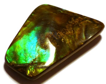 Ammolite Cabochon Stabilized Vibrant Green Designer Hand Cut Korite Ammonite Alberta Canadian Precious Gemstone Pendant Rare Opalized Metric