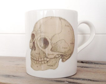 Anatomical Skull Illustration Bone China Mug