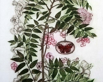 Etching / limited edition original etching (printmaking / graphic art) / original print / original art / botanical print - 'Rowan III'