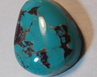 Spider Web  Turquoise cab ......  20 x 17 x 6 mm   ..........    a3414