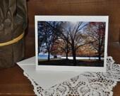 Colors of Fall  - Fine Art  Fall Photo Greeting Card