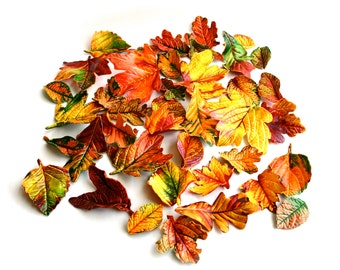 Edible, Candy Fall Leaves (2 dozen) - Stand alone candy, wedding cake decoration, wedding favor, host gift. Halloween / Thanksgiving