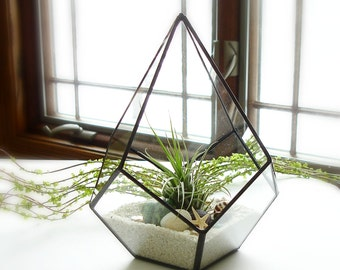 Terrarium, Geometric Terrarium, Glass Planter with Air Plant