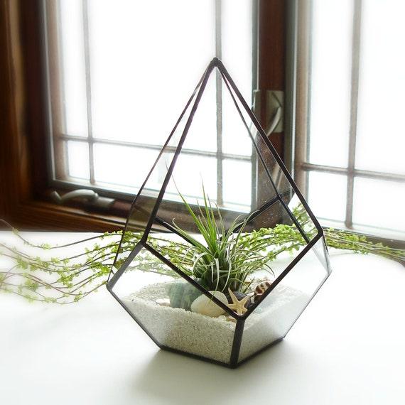 terrarium terrarium g om trique verre planteur avec usine. Black Bedroom Furniture Sets. Home Design Ideas
