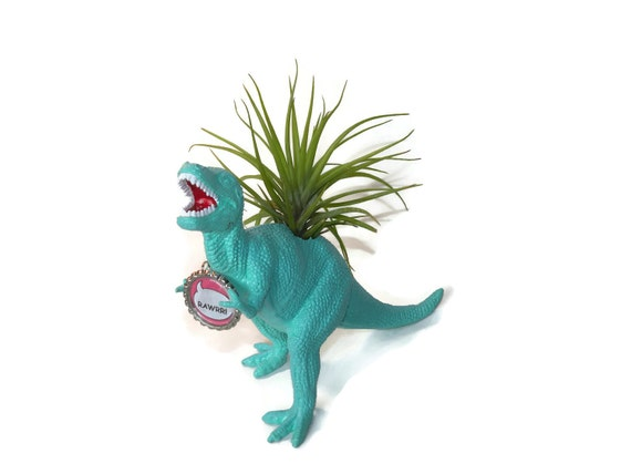 T Rex dinosaur planter in turquoise blue with personalized message and air plant.