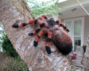 Mexican Red Knee Tarantula Spider Needle Felted Wool Pet *Made to Order*