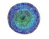 Crotchet Web no. 49 (24cm diameter circle) Original Watercolour Painting